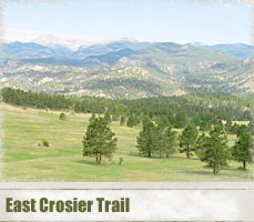 east_crosier_header