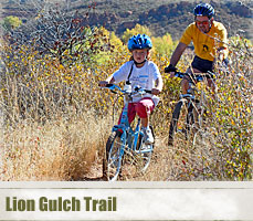 lion_gulch_header