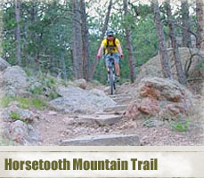 lsp_horsetooth_header