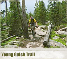 young_gulch_header